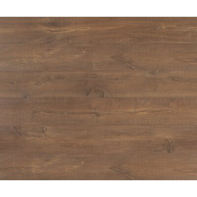 Reclaime 8 x 54 x 12mm Oak Laminate Plank in Desert Oak