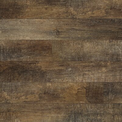 Restoration 6 x 51 x 12mm Laminate Flooring in Bark