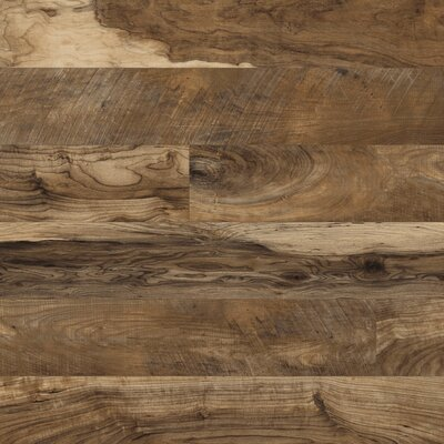 Restoration? 6 x 51 x 12mm Laminate Flooring in Natural