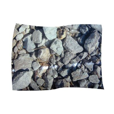 Hard Rocks Pet Throw Size: Large