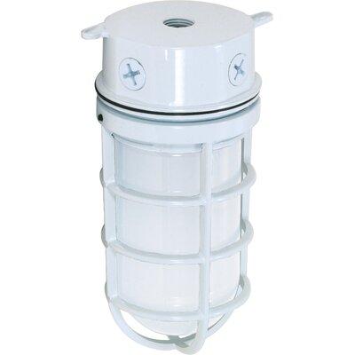 1-Light Flush Mount Finish: White, Size: 9.38 H x 4.25 W x 4.5 D