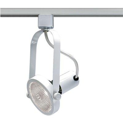 Gimbal 1-Light Ring PAR30 Track Head