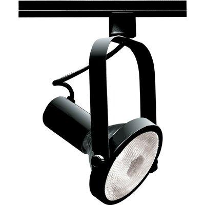 1-Light Track Head Bulb Type: PAR38 Incandescent 150W