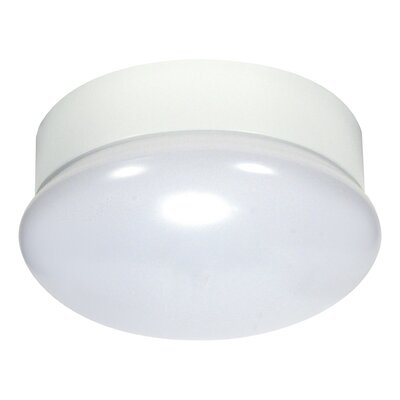 Branson 1-Light Flush Mount