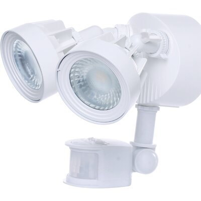 Dual Head 1-Light LED Security Light