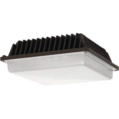 Canopy Fixture LED Wall Pack