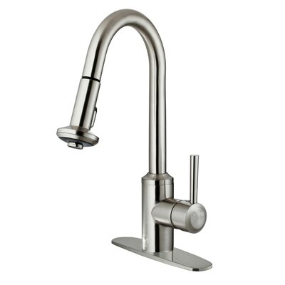 Astor Single Handle Pull-Down Spray Kitchen Faucet with Deck Plate