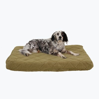 Quilted Orthopedic Dog Pillow with Protector Pad Size: Medium (42 L x 30 W), Color: Sage
