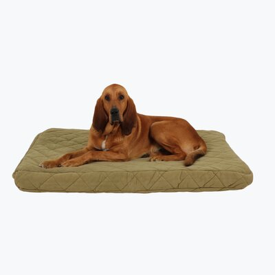 Quilted Orthopedic Dog Pillow with Protector Pad Size: Large (48 L x 36 W), Color: Sage