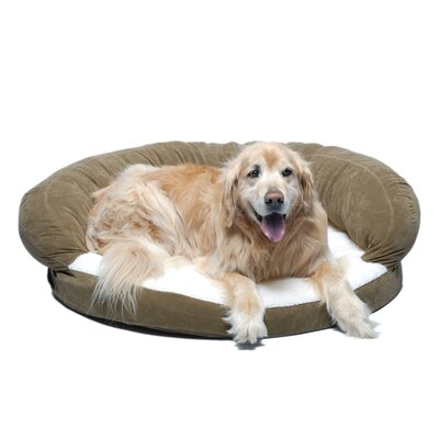 Ortho Sleeper Bolster Dog Bed Size: Small (35 L x 35 W), Color: Sage