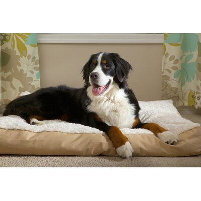 Reina Pet Bed Size: X-Large (44 L x 35 W), Color: Cream