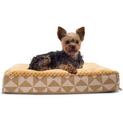 Plush Top Kilim Deluxe Orthopedic Dog Pillow Color: Pyramid Latte, Size: Small (20 L x 15 W)