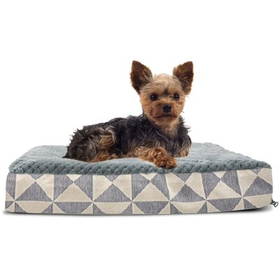 Plush Top Kilim Deluxe Orthopedic Dog Pillow Color: Pyramid Gray, Size: Small (20 L x 15 W)