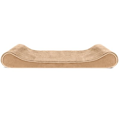 Minky Plush Velvet Luxe Lounger Contour Dog Pillow Color: Camel