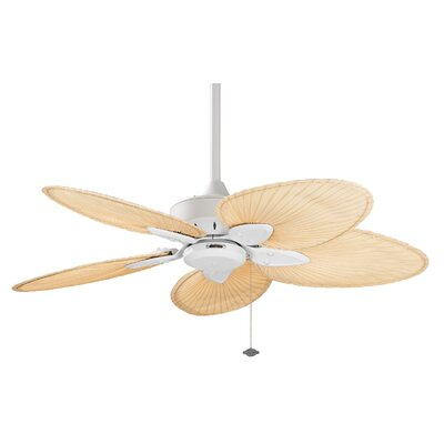 44 Windpointe 5 Blade Ceiling Fan