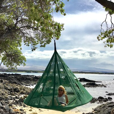 MoonDrop Tree Hammock Color: Forest/Dark Green