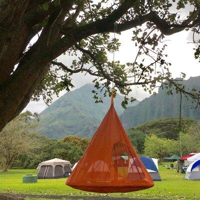 TearDrop Tree Hammock Color: Orange