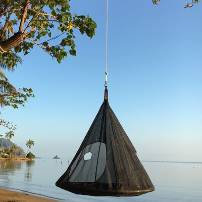 TearDrop PVC Chair Hammock Color: Black