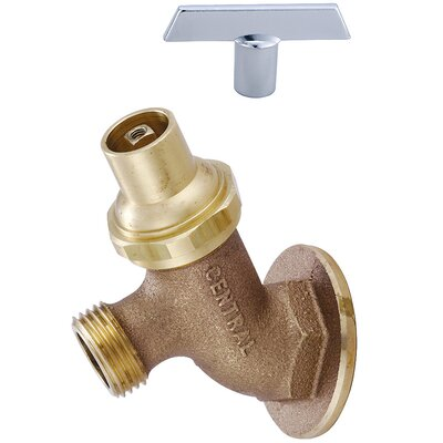 Wall Mounted Lawn Faucet