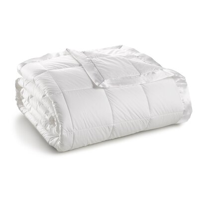 370 Thread Count Year Round Down Alternative 100% Cambric Cotton Blanket Size: Full/Queen