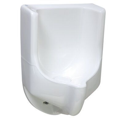 ADA Urinal