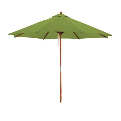 9 Phat Tommy Market Umbrella Fabric: Kiwi