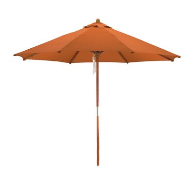9 Phat Tommy Market Umbrella Fabric: Tuscan