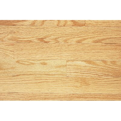 Color Plank 4 Solid Red Oak in Natural