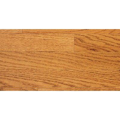Color Plank 5 Solid Red Oak in Golden