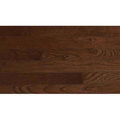 Color Plank 4 Solid White Oak in Metro Brown