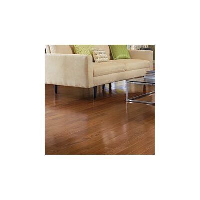 Color Plank 5 Solid Red Oak Hardwood Flooring in Mocha