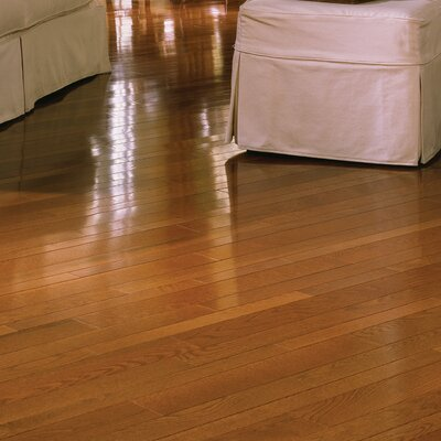 Color Plank 5 Solid White Oak Hardwood Flooring in Gunstock