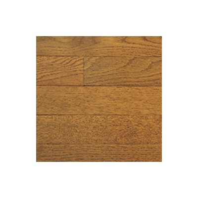 Color Plank 4 Solid White Oak Flooring in Gunstock