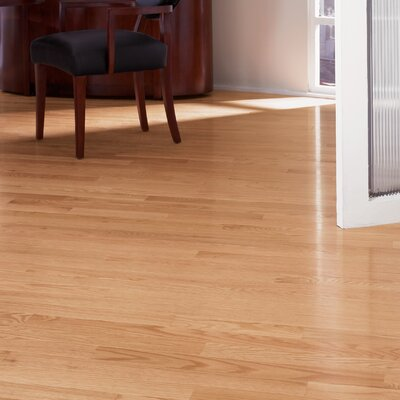 Color Strip 3-1/4 Solid Red Oak Hardwood Flooring in Natural Red Oak