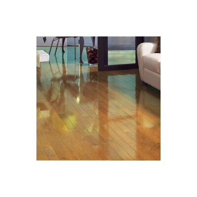 Color Strip 2-1/4 Solid White Oak Hardwood Flooring in Natural High Gloss