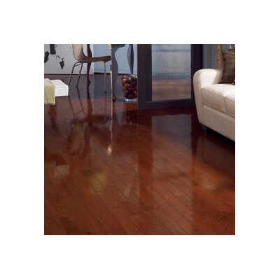 Color Strip 2-1/4 Solid Red Oak Hardwood Flooring in Cherry Oak High Gloss