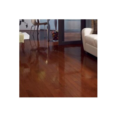 Color Strip 3-1/4 Solid Red Oak Hardwood Flooring in Cherry Oak High Glass