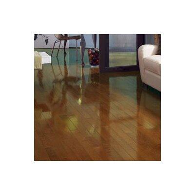Color Strip 3-1/4 Solid White Oak Hardwood Flooring in Chestnut High Gloss