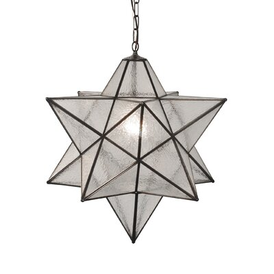 Moravian Star Seedy 1-Light Geometric pendant