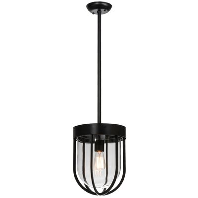 Jaula 1-Light Foyer Pendant