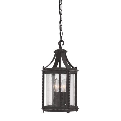 Palencia 3-Light Outdoor Hanging Lantern