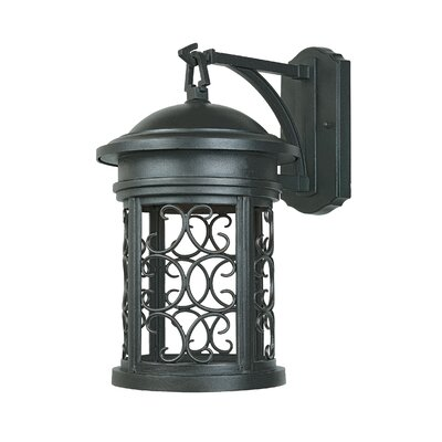 Ellington 1-Light Outdoor Wall Lantern