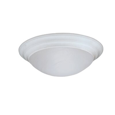 Lunar Flush Mount Finish / Size / Shade Color: White / 4.75 H x 14 W / White Alabaster Textured
