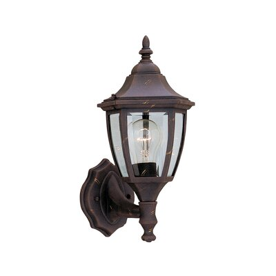 Budget Cast Aluminum 1-Light Outdoor Wall lantern Finish: Autumn Gold
