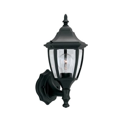 Budget Cast Aluminum 1-Light Outdoor Wall lantern Finish: Black