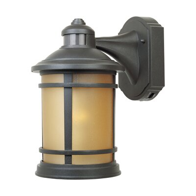 Hanover 1-Light Outdoor Wall Lantern Finish: Oil Rubbed bronze
