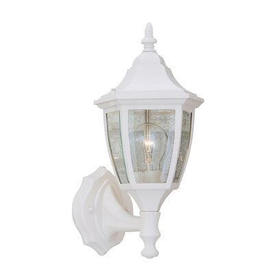 Budget Cast Aluminum 1-Light Outdoor Wall lantern Finish: White