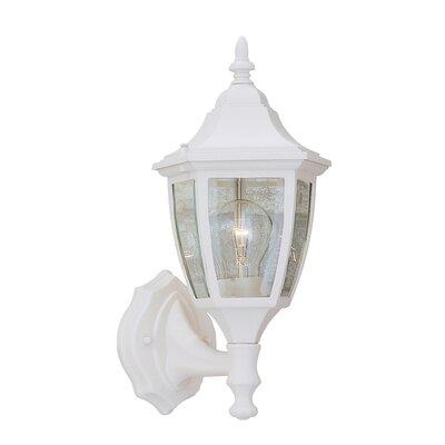 Budget Cast Aluminum 1-Light Outdoor Wall lantern Finish: White