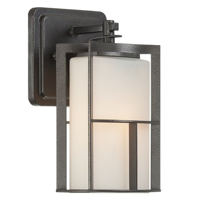 Braxton 1-Light Outdoor Wall Lantern