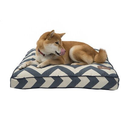 Spellbound Premium Cotton Square Pillow Dog Bed Size: Large - 36 L x 36 W, Color: Blue